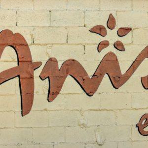 the best french restaurant   atlanta blogger   anis bistro